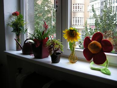 Miluju kytky <3